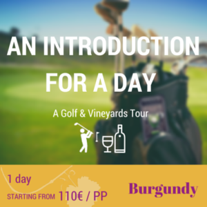 Burgundy - An Inroduction for A Day