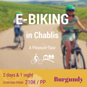 Burgundy - E-Biking in Chablis