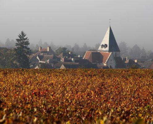 salon des vins vinées tonnerroises tonnerre bourgogne salon gastronomique